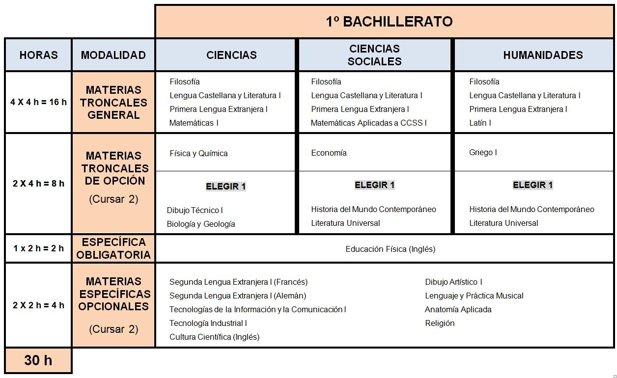 organizacion-1-bach